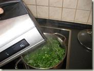 Zubereitung_Grünkohl-Kartoffelbrei_4