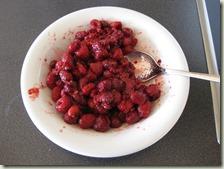 Zubereitung_Himbeeren-Joghurt-Shake_1
